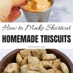 Shortcut Homemade Triscuits Collage with Text Overlay