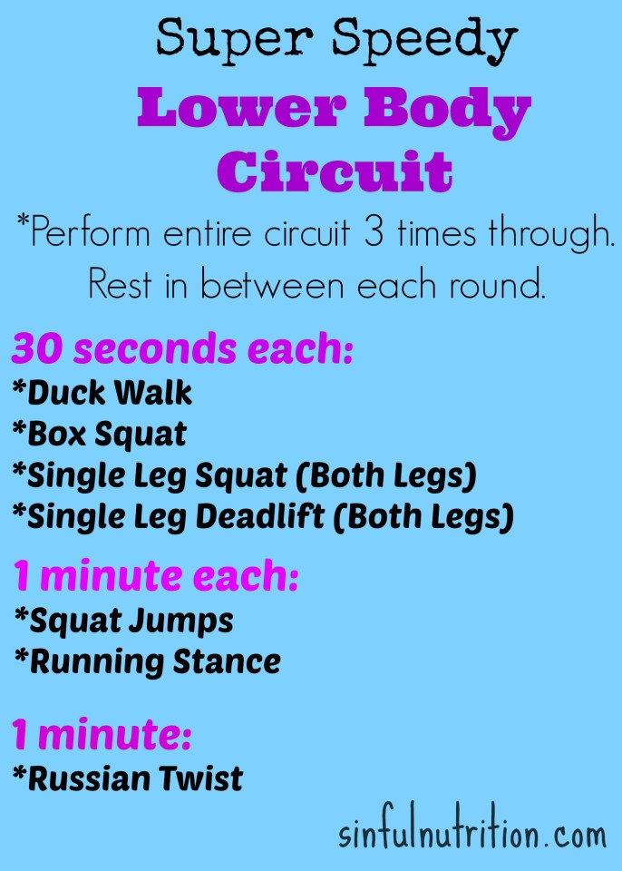 Lower Body Ciruit Workout | sinfulnutrition.com