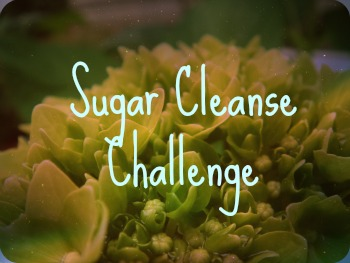 Sugar Cleanse Challenge | sinfulnutrition.com