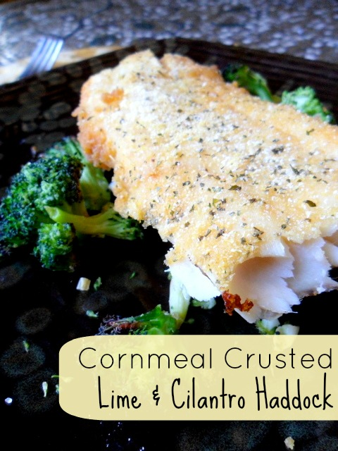 Cilantro & Lime Cornmeal Crusted Haddock -- Baked not fried, makes this a super healthy and flavorful dinner recipe. Only three ingredients to make! #glutenfree