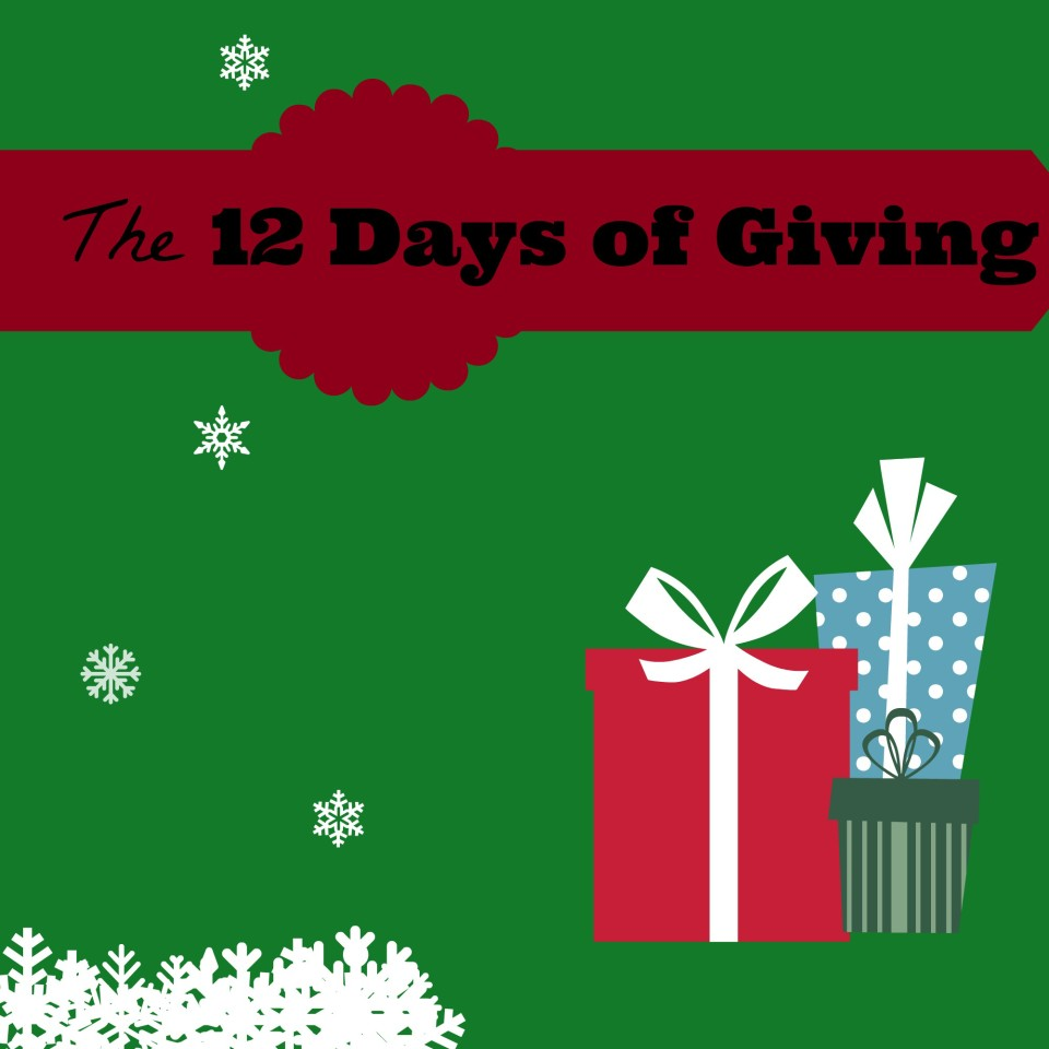 12 Days of Giving | sinfulnutrition.com