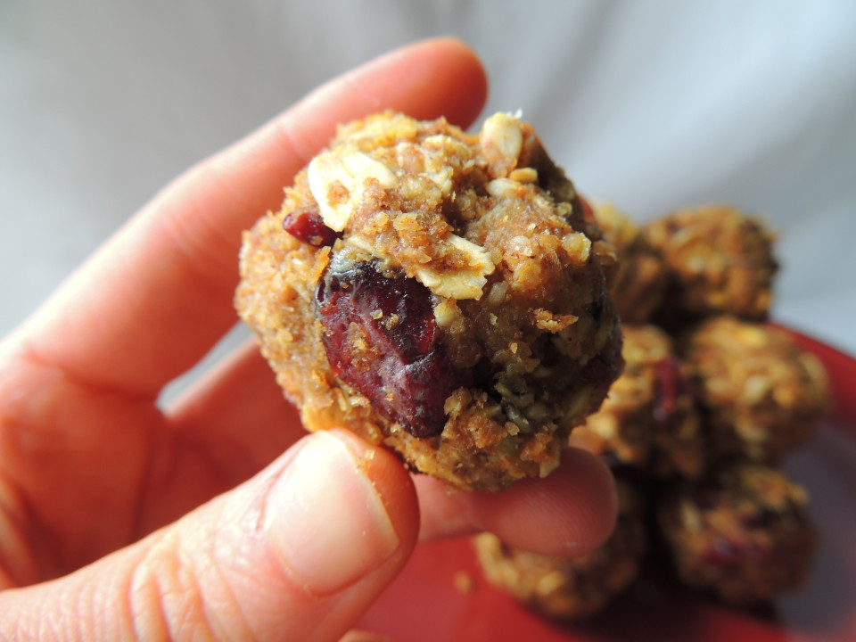 Cranberry Pumpkin Energy Balls – An easy and healthy snack you can take on the go! No refined sugar, flour, or oil! #vegan