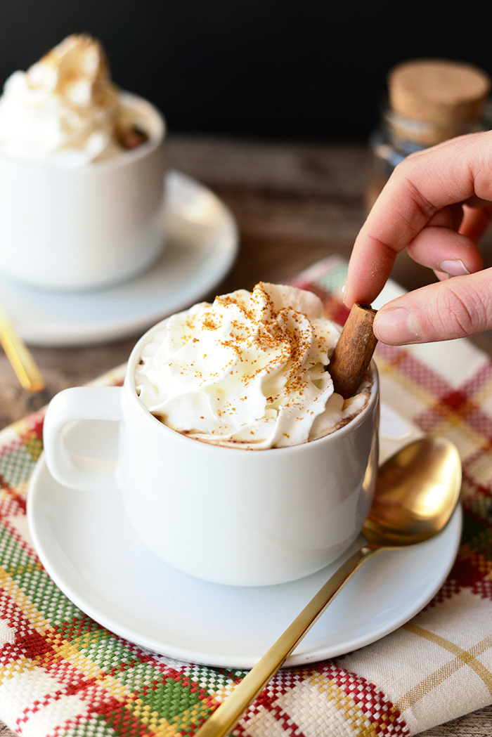 Gingerbread Hot Chocolate + 8 more Unbelievably Delicious Homemade Hot Chocolate Recipes!