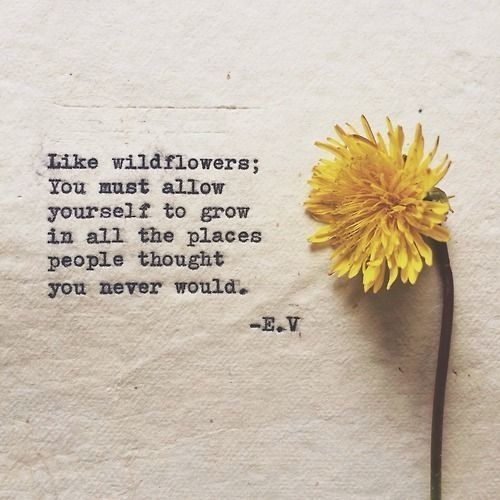 wildflowers grow quote