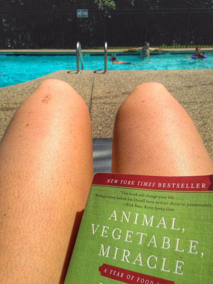Pool Book and Sunshine