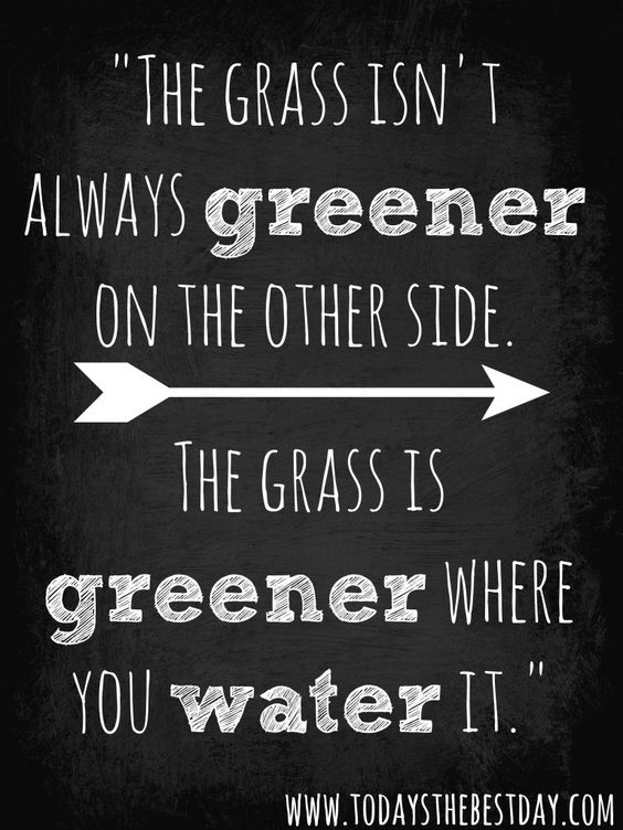 Grass is Greener Water Quote