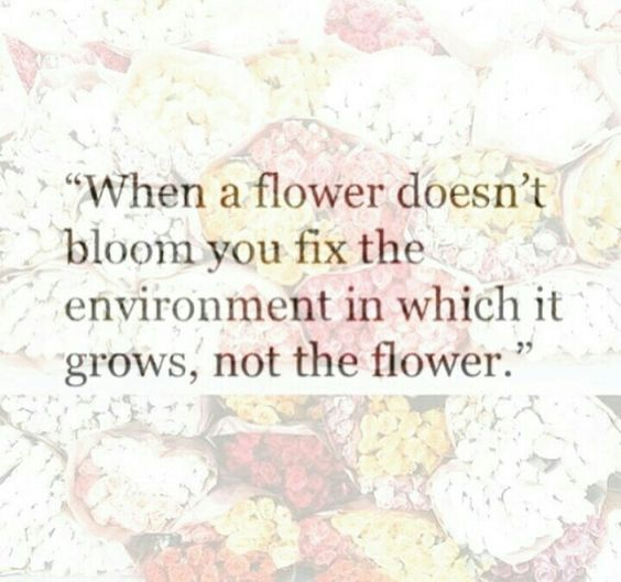 Flower Environment Quote