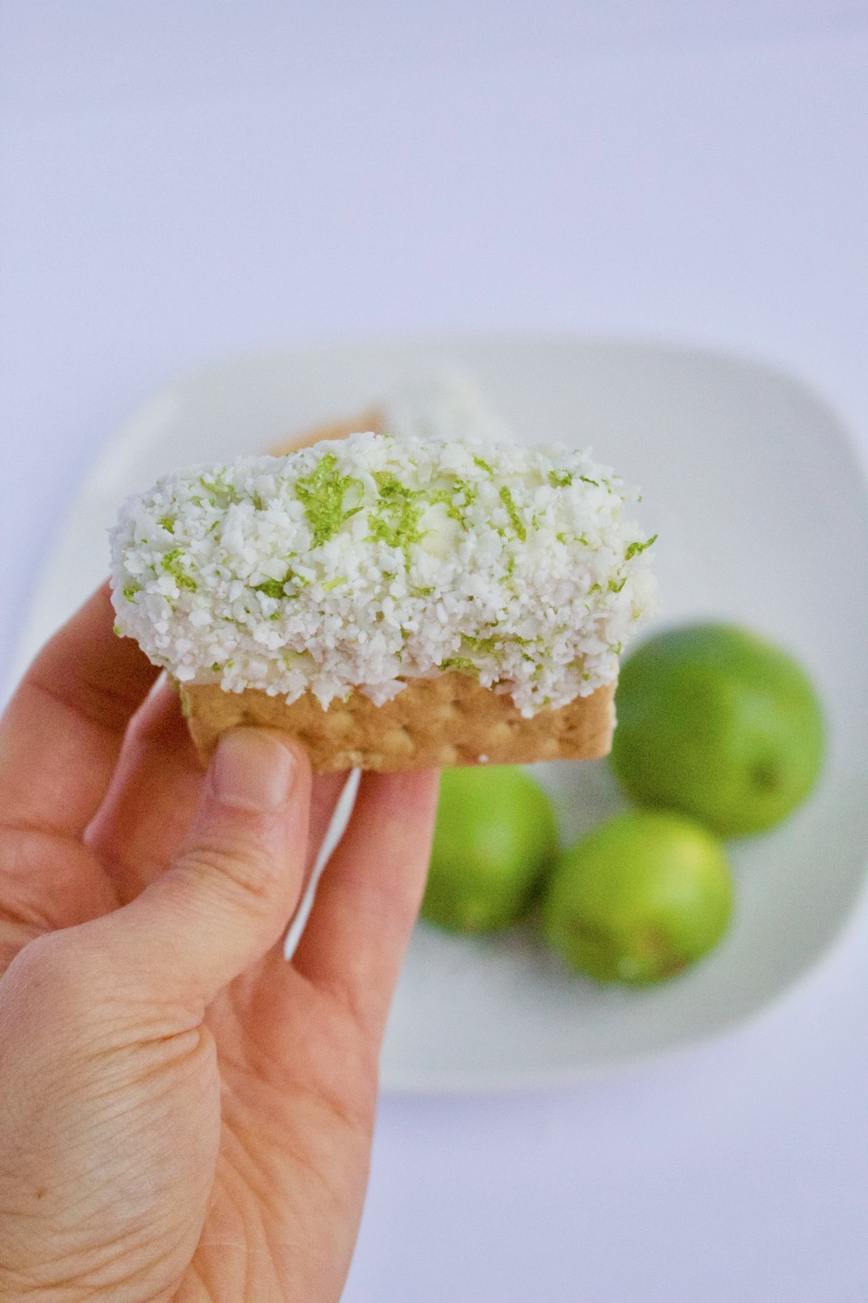 Homemade Key Lime Pie Ice Cream Sandwiches -- A sweet and creamy dessert recipe made with simple ingredients and no added sugar! | Vegetarian | Dairy-Free | @sinfulnutrition
