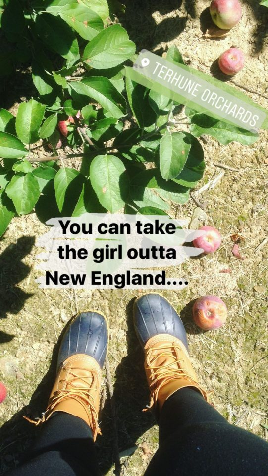 Bean Boots Apple Picking