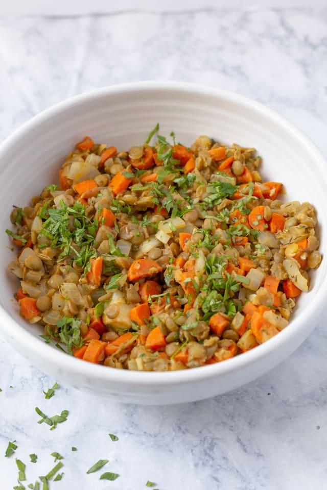French Lentil Salad Recipe Close Up